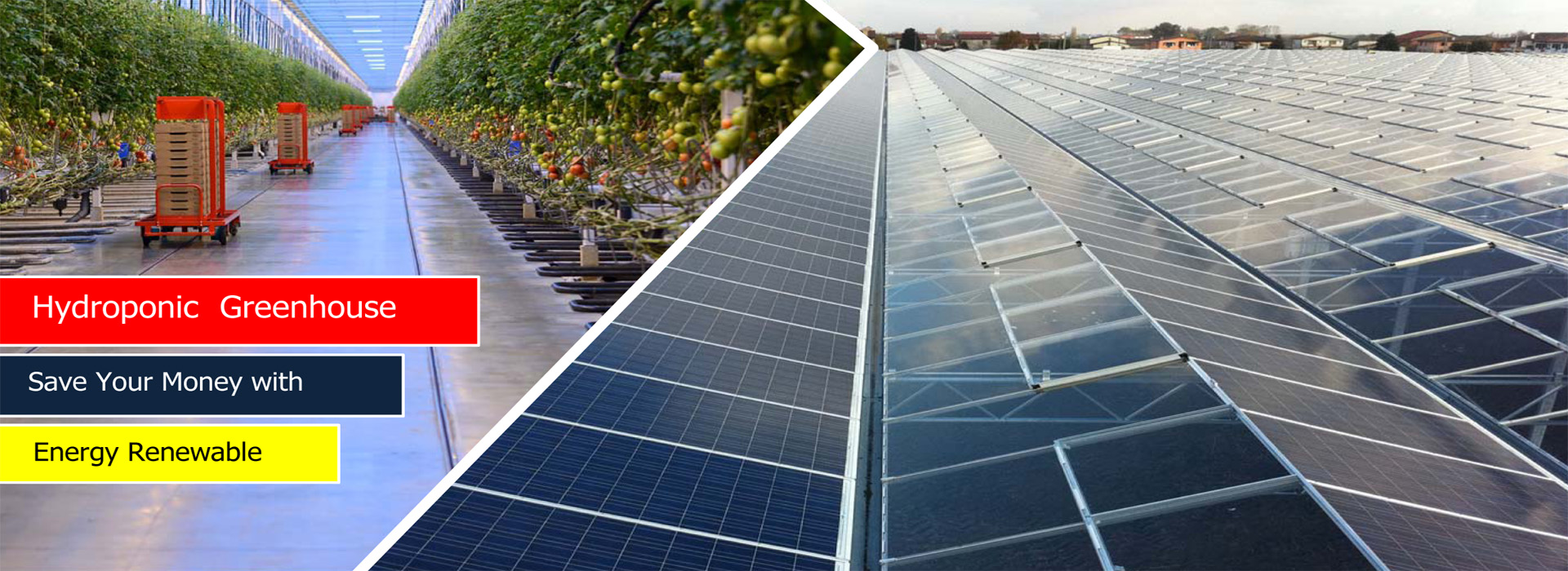 Energy Renewable Hydroponic Greenhouse  ITC Ltd